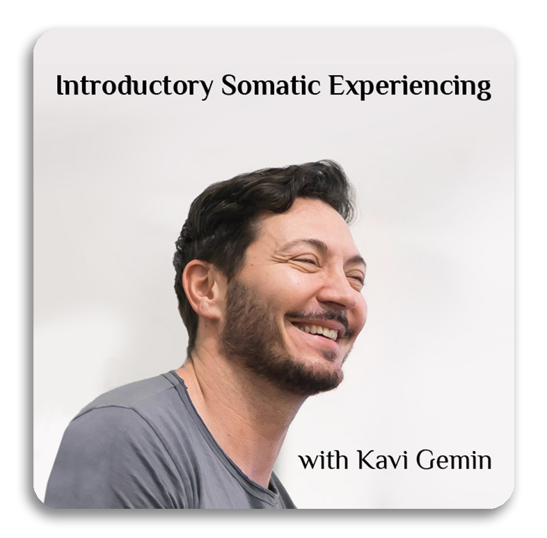 Introductory Somatic Experiencing (SE) Training, Belgrade