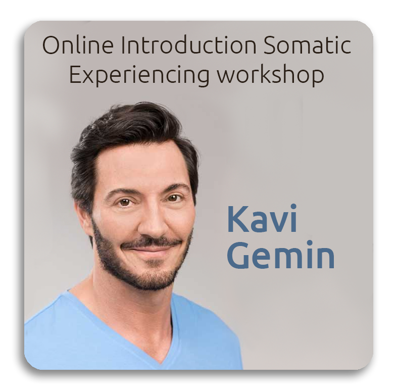 Online Introduction Somatic Experiencing workshop August 2020